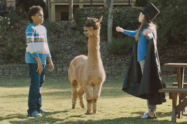 Juicy Drop Gummies Alpaca Commercial